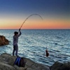Surfcasting & Rock Fishing