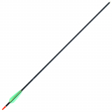 Bandit Single Aluminium Arrow 29in