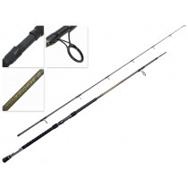 PENN Allegiance II Surf Rod 10ft 10-15kg 2pc