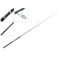 Shimano Energy Concept Topwater Spin Rod 8ft 40-70g PE2-4 2pc
