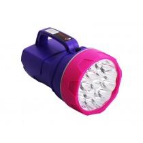 Large 19 LED Lantern